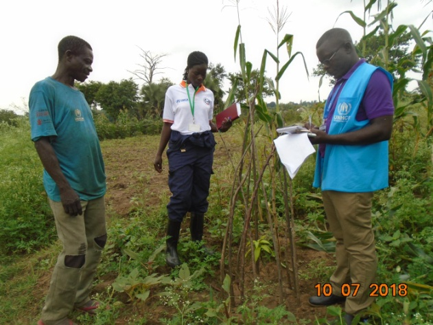 Joint monitoring of household trees with UNHCR Environment Assistant.
